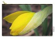 Dwarf Cyclamineus Daffodil Named Jet Fire Carry-all Pouch
