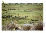 Environmental Tierra Del Fuego -- Carry-all Pouch