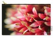 Gaillardia Pulchella Named Sundance Bicolor Carry-all Pouch