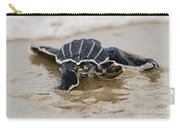 Leatherback Sea Turtle Hatchling Amelia Island Florida Carry-all Pouch