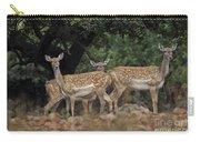 Mesopotamian Fallow Deer  Carry-all Pouch