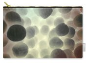 Mrsa Carry-all Pouch