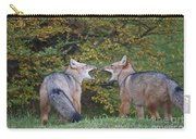Patagonian Red Fox Carry-all Pouch