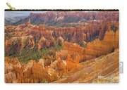 Sandstone Hoodoos Bryce Canyon Natl Park Carry-all Pouch