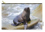 Sea Lion Carry-all Pouch by Alexey Stiop