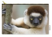 Verreauxs Sifaka In Berenty Carry-all Pouch