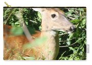 White Tailed Deer Portrait Carry-all Pouch