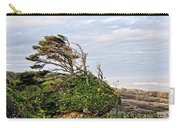 Yachats Oregon Carry-all Pouch