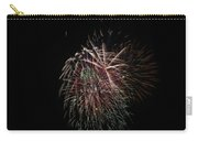 4th Of July Fireworks Carry-all Pouch by Alan Hutchins