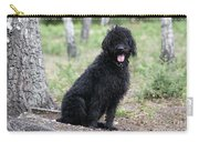 Black Labradoodle Carry-all Pouch