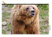 Brown Bear Carry-all Pouch