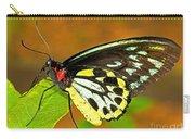 Cairns Birdwing Butterfly Carry-all Pouch