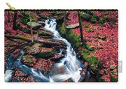 Chesterfield Gorge New Hampshire Carry-all Pouch by Edward Fielding