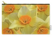 5 Daffy's On Parade Carry-all Pouch