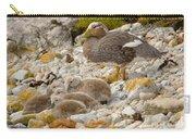 Falkland Steamerduck Carry-all Pouch