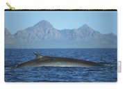 Fin Whale In Sea Of Cortez Carry-all Pouch