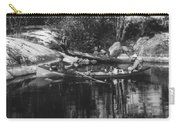 New York Adirondacks Carry-all Pouch
