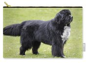 Newfoundland Dog Carry-all Pouch