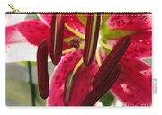 Orienpet Lily Named Scarlet Delight Carry-all Pouch