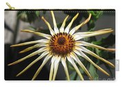 Osteospermum Named African Moon Carry-all Pouch