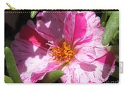 Portulaca Named Sundial Peppermint Carry-all Pouch
