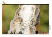 Ring Tailed Lemur Carry-all Pouch