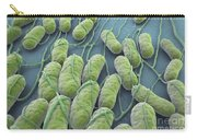 Salmonella Bacteria Carry-all Pouch