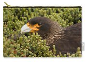 Striated Caracara Carry-all Pouch