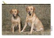 Yellow Labrador Retrievers Carry-all Pouch