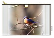 5325-010- Eastern Bluebird Carry-all Pouch