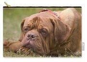Dogue De Bordeaux Carry-all Pouch