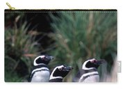 Falkland Islands Penguins Carry-all Pouch