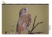 Fox Sparrow Carry-all Pouch