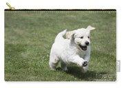Golden Retriever Puppy Carry-all Pouch by John Daniels
