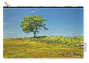 Lone Tree With Blue Sky In Blueberry Field Maine Carry-all Pouch
