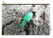 6 Spotted Tiger Beetle Carry-all Pouch