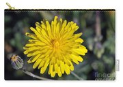 Spring Wild Flower Carry-all Pouch by George Atsametakis