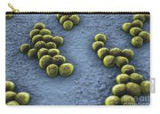Superbug Mrsa Carry-all Pouch