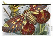 The Butterfly Vivarium Carry-all Pouch