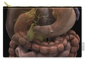 The Gallbladder Carry-all Pouch