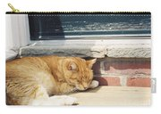 #665 03 Catnap  Carry-all Pouch