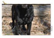 Black Labrador Retriever Carry-all Pouch by Linda Freshwaters Arndt