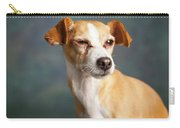 Portrait Of A Chihauhua Mix Dog Carry-all Pouch