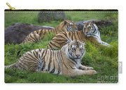 Siberian Tigers, China Carry-all Pouch