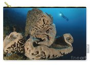 The Salvador Dali Sponge With Intricate Carry-all Pouch