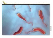 Cholera Bacteria Carry-all Pouch