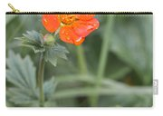 Scarlet Avens Orange Wild Flower Carry-all Pouch