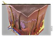 Anatomy Of Human Skin Carry-all Pouch