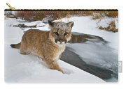 Mountain Lions In The Western Mountains Carry-all Pouch