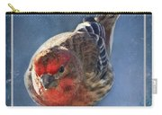 A Blue Morning Housefinch Carry-all Pouch